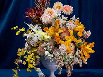 Jasmine Poole + Chris Sewell - Floral Study with Budgies - photograph