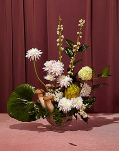 Jasmine Poole + Chris Sewell - Floral Study with Slugs