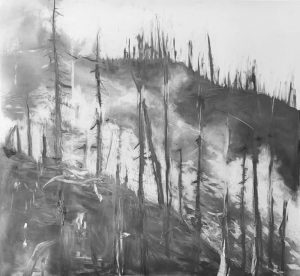 Danuta Tojka - Mountain Forest - Mixed Media Work