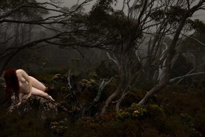 Lilli Waters - In Fog - Photography