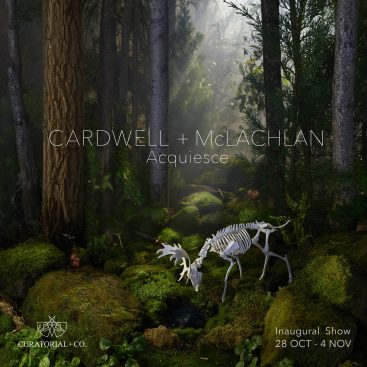 Acquiesce - Cardwell+McLachlan - photography exhibition