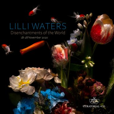 Lilli Waters - Disenchantments of the World - photography exhibition